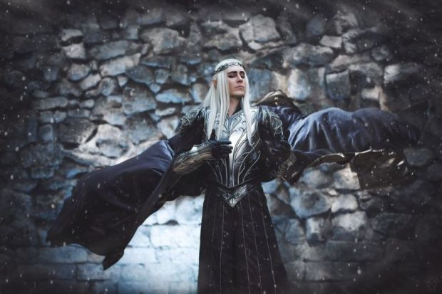 cosplay rey elfo 2