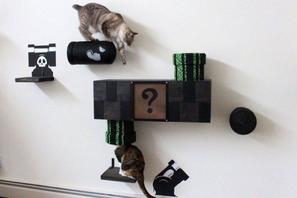 we-turned-our-room-into-a-mario-cat-world-8__880